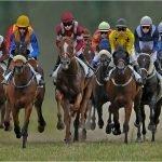 Paardenrennen