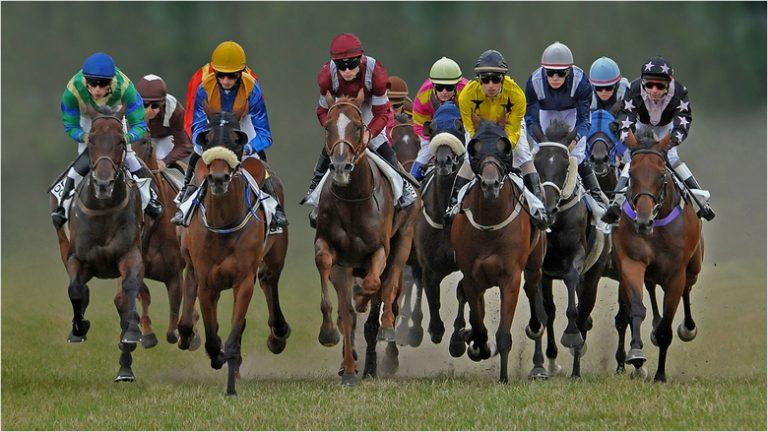 Online wedden op paardenrennen – Waar kun je terecht?